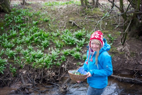 wild garlic hunting