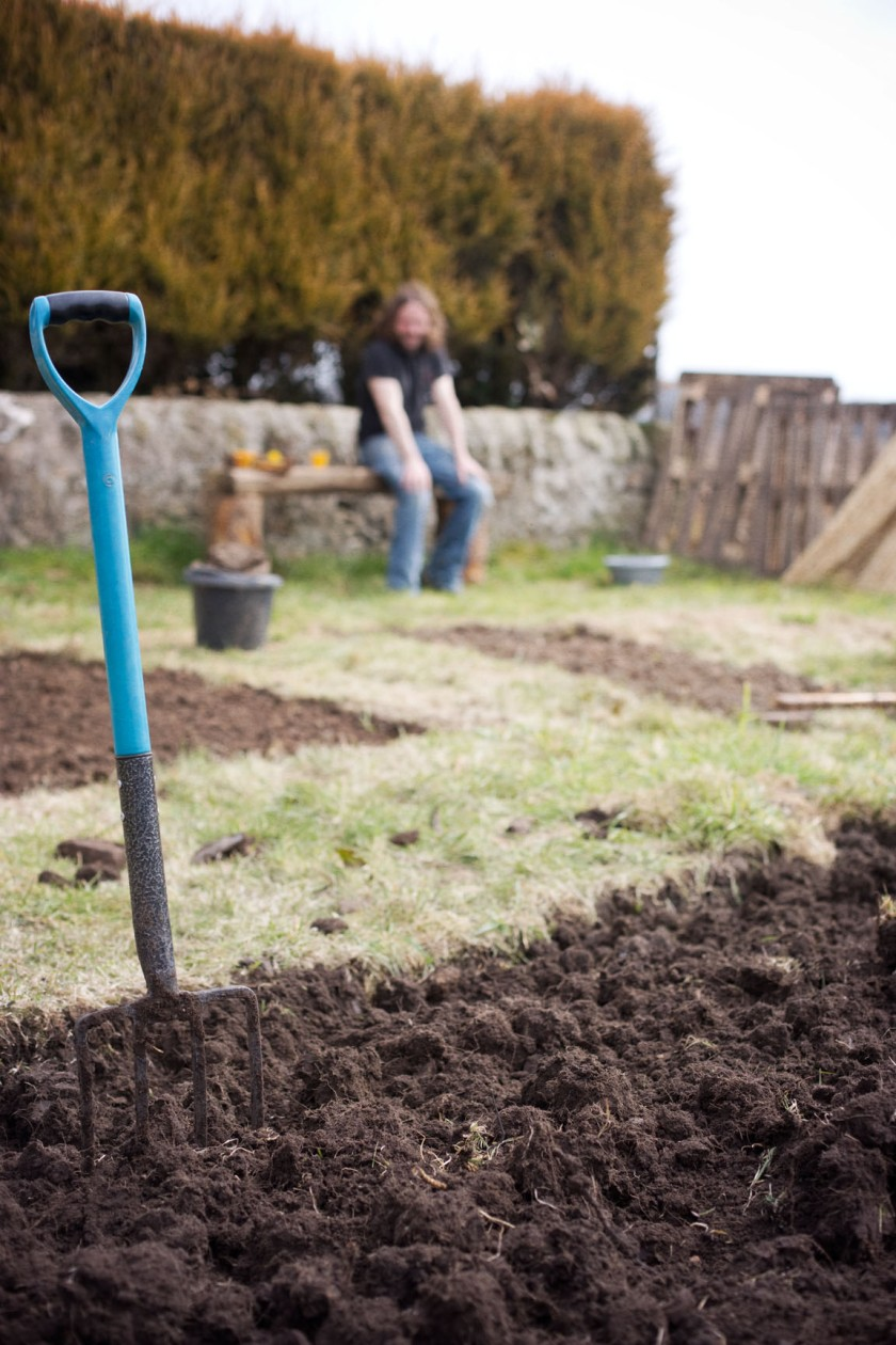 veg plot digging