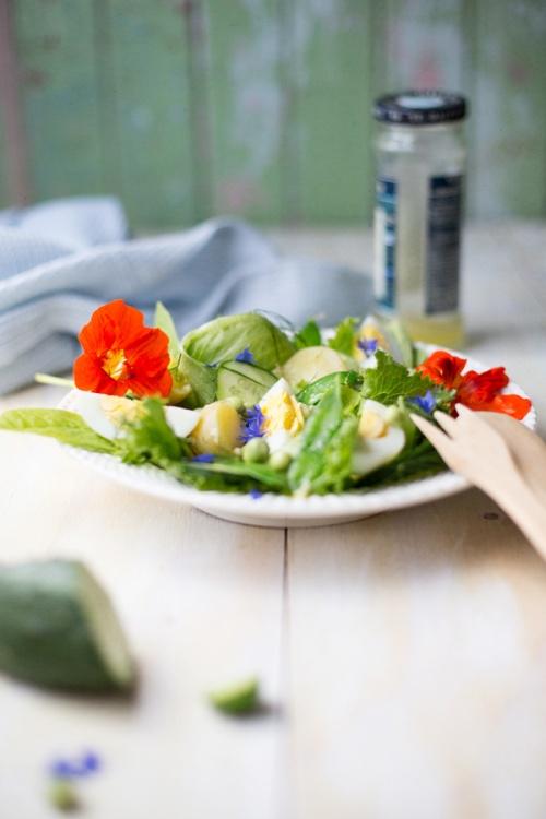 garden salad-6