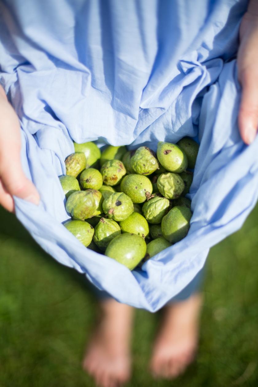 green walnuts (2 of 1)